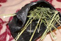 Тюменец, шатавшийся по дорогам с зельем из марихуаны, отправится под суд