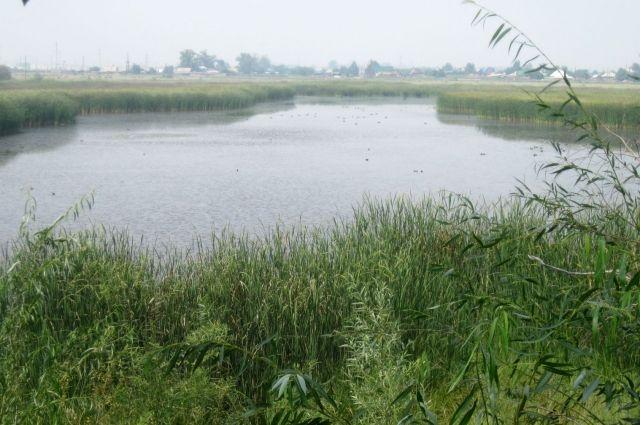 Озеро Михайловское.