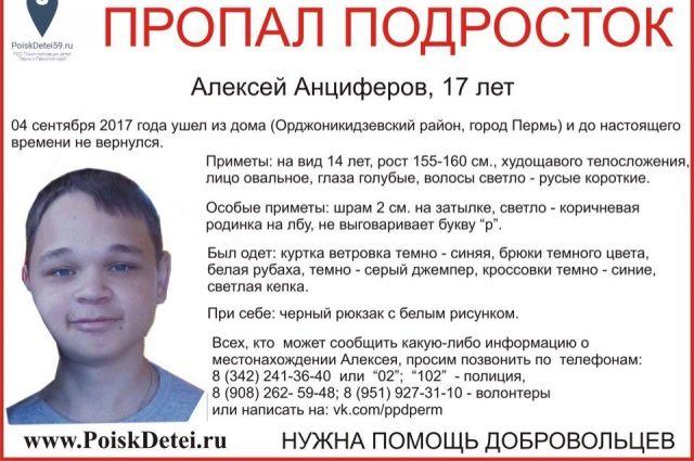 Правоохранители и волонтёры по-прежнему надеются, что мальчик жив.