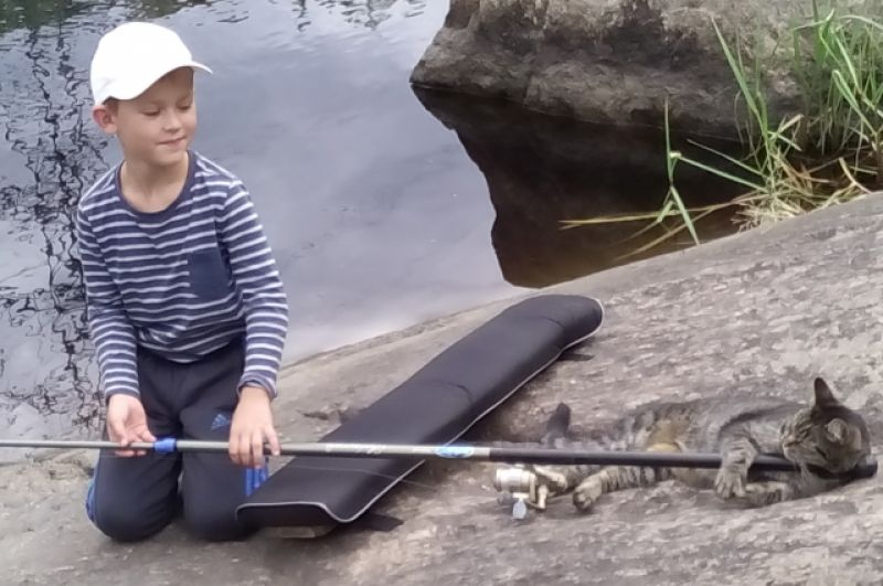 Мастер-класс по ловле рыбы от кота.