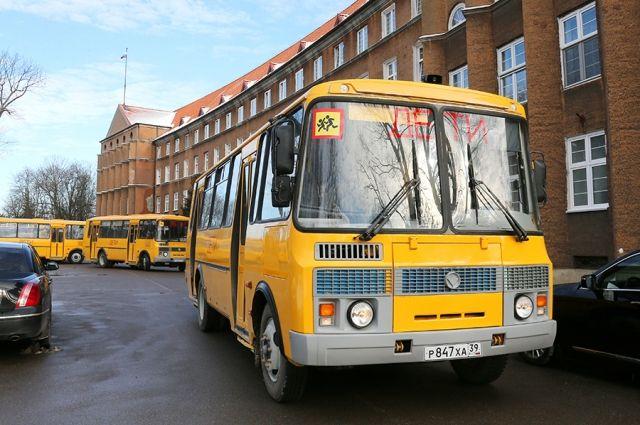 Правительство РФ выделило Калининграду  школьные автобусы и кареты «Скорой».