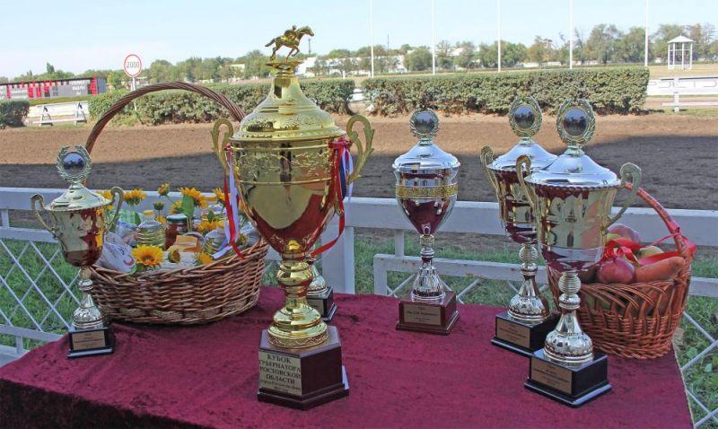 Победителем скачек стал жеребец Дозатор под седлом мастера-жокея Алексея Волика.