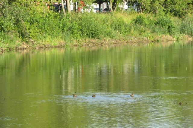 В реке Сылва в районе села Сылвенск Кунгурского района обнаружено тело мужчины.