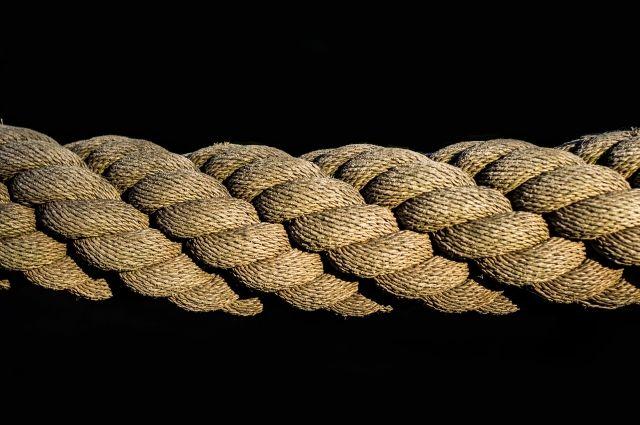 Тюменцы обнаружили в Зареке труп, висящий на дереве на верёвке