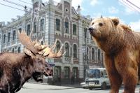 В Красноярске высока вероятность столкнуться лицом к лицу не только с копытными.