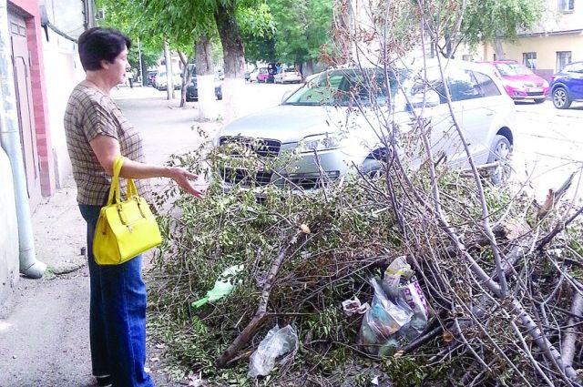 Вокруг куч из веток и листьев на ул. Ереванской уже образовались стихийная свалкка.
