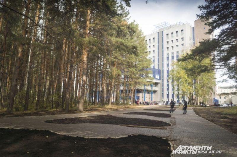 У здания библиотеки СФУ можно увидеть бурное строительство Студенческого бульвара.