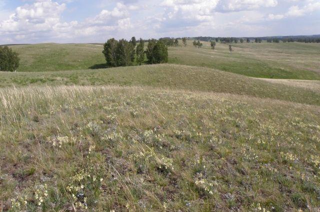 Заказник стал 22-й особо охраняемой природной территорией в области.