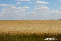 LTE-интернет МТС в Новотроицке «полетел» в два раза быстрее.