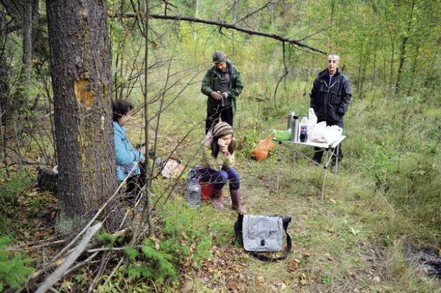 В лесу люди так увлекаются поиском грибов, что уходят в самую глушь.