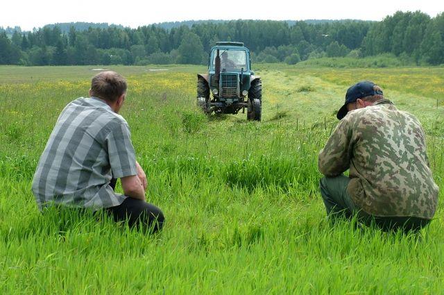 В аграрном крае запасы пестицидов очень большие.