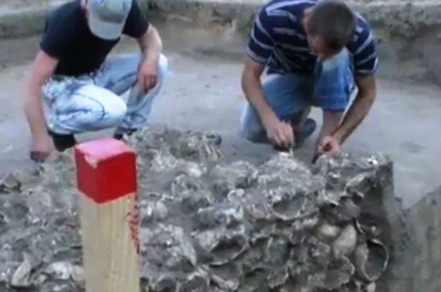 Житель Чигирина обнаружил в огороде 200 черепов