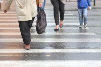 Пешеход - это самый массовый участник дорожного движения.