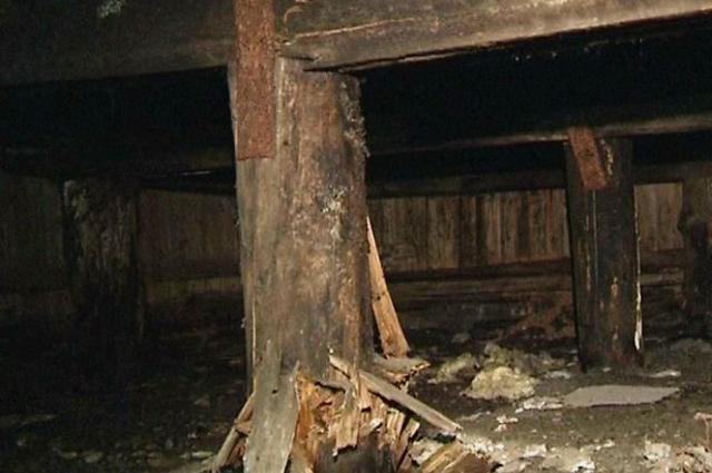 В Салехарде эксперты, обследующие «деревяшку» пришли в ужас