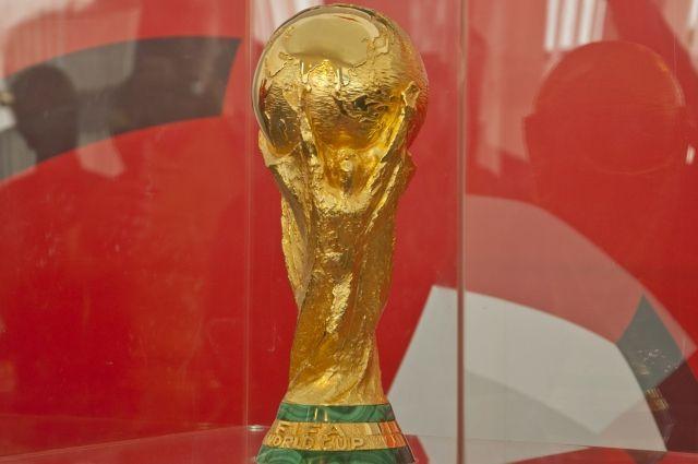 Кубок мира FIFA выставлен в Омске для всех желающих.
