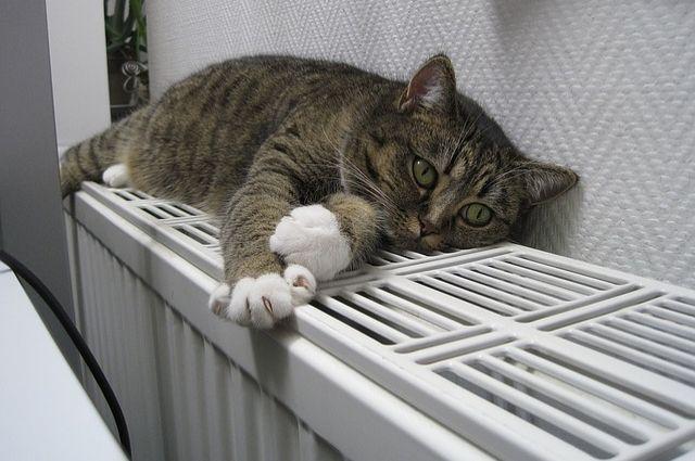 Вдомах красноярцев потеплели батареи