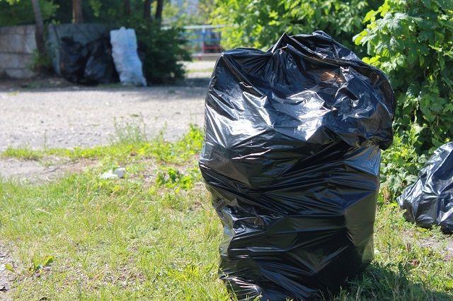 Почти тонну мусора собрали ямальцы рядом с «Мамонтом»