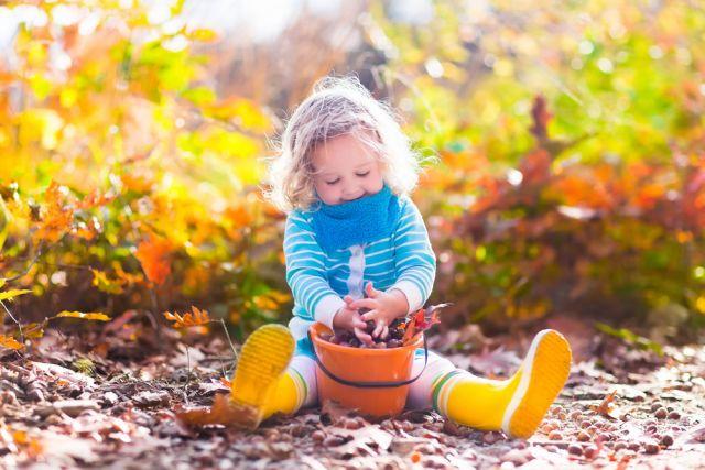 Календарь народных примет на осень