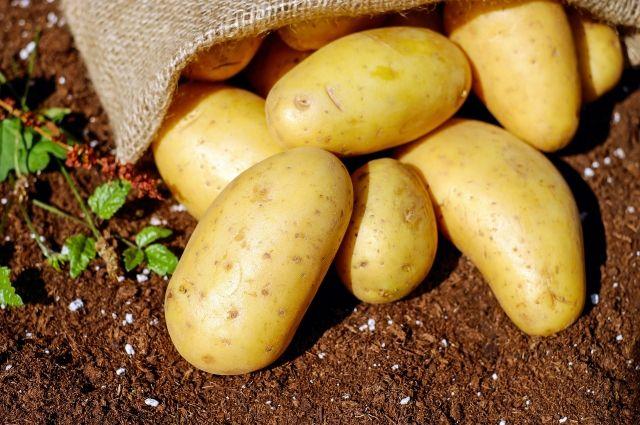 Пенсионерка пыталась продать картофель через интернет.