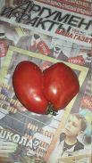 Участник №2. Анжелика Евдокимова, Ангарск. «Сердцем люди понимают - аргументов не хватает! Знаний больше нужно - факт, помидор ведь, не мутант!»