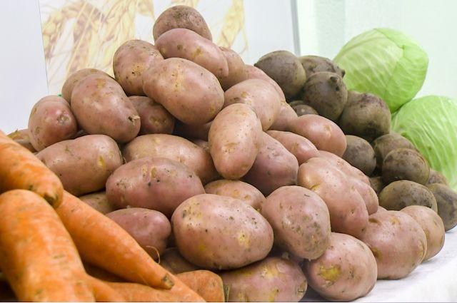Неменее 5 000 кузбассовцев получат бесплатные овощные комплекты