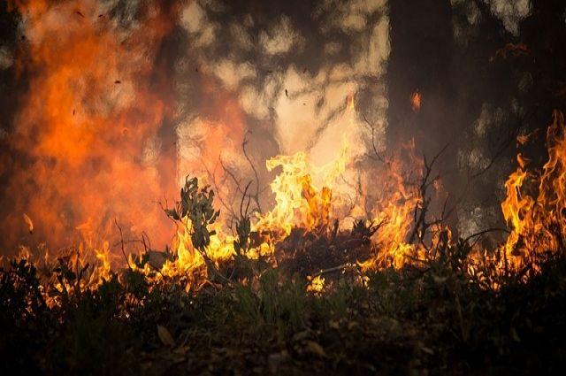 ВДагестане гасят лесные пожары при помощи авиации МЧС