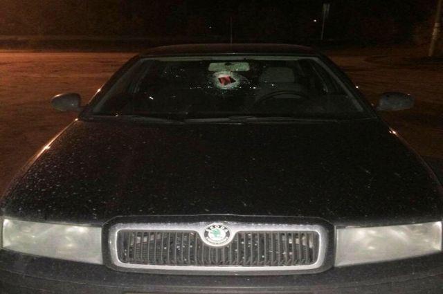 На трассе Сургут-Салехард водителю в лобовое стекло прилетело нечто