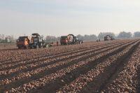 Техника будет востребована, ведь у сибирских аграриев ощущается серьёзный дефицит тракторов, комбайнов и другой сельхозтехники.