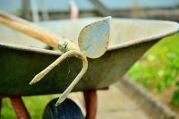 Осенью садоводам и огородникам предстоит выполнить на участке немало работ