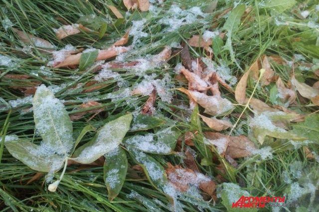 МЧС: вНижегородской области с23 по27сентября ожидаются заморозки