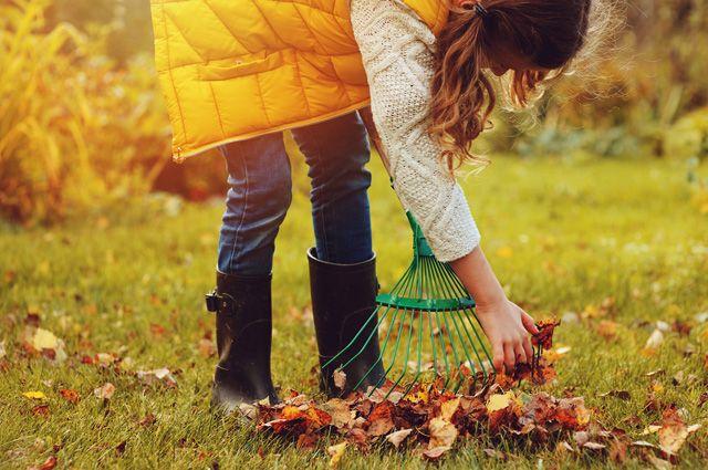 Какой уход нужен газону осенью?