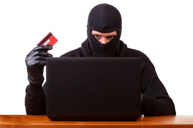 Жительница Нового Уренгоя перепутала сеть Интернет с банком