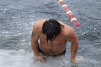 Морж из Ирландии планирует побить рекорд в Тюмени