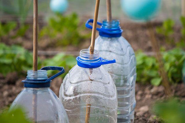 Бутылочная гирлянда. Как хранить мини-теплицы из пластиковых бутылок