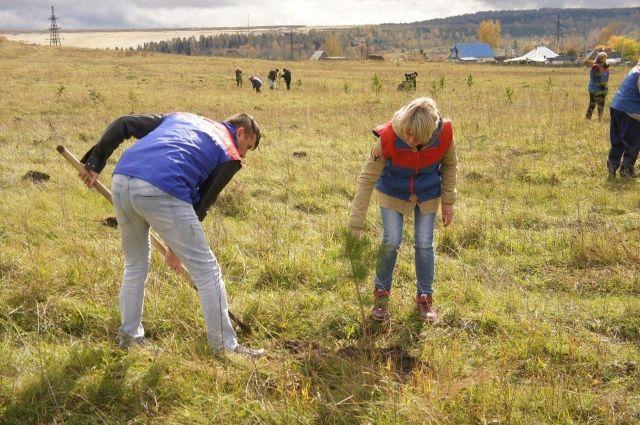В Кемеровской области заложили парк моногородов России.