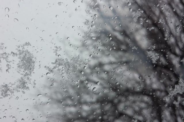 В Кемеровской области на выходных выпал первый снег.