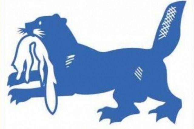 Часть логотипа юбилея региона.