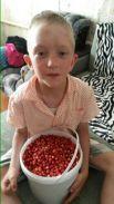 Участник № 7. Ольга Шестакова: «Возле дома, на бору грибы ягоды беру!»