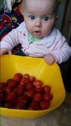 Участник № 8. Ольга Шестакова: «Возле дома, на бору грибы ягоды беру!»