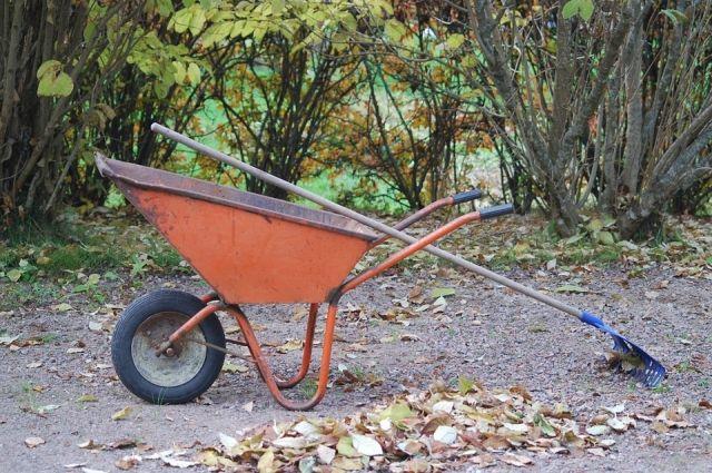 Вместо лопаты агрономы советуют перекапывать огород вилами.