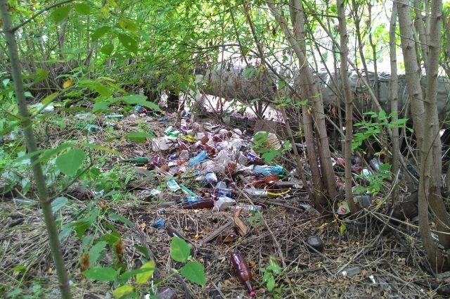 В Кемерове экологи нашли 11 несанкционированных свалок.