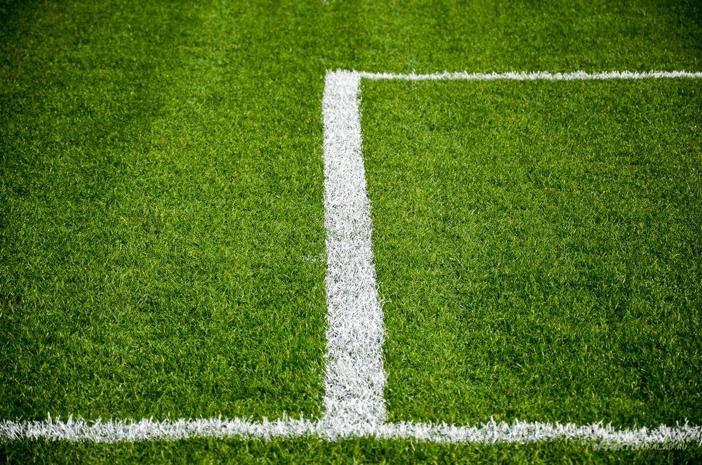 Посев натурального футбольного газона выполнен в два этапа.