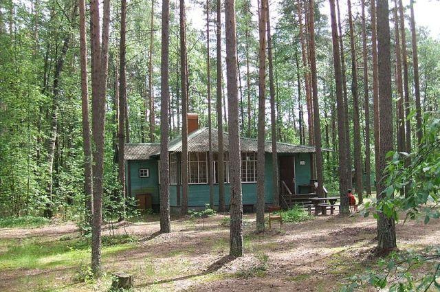 ВСмольном пояснили бесплатную передачу земли вКомарово церкви