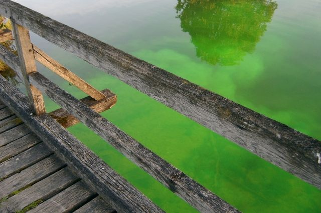 В Кузбассе фура ушла под воду, обрушив мост через реку.