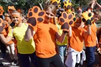 В Уссурийске тигра считают своим зверем.