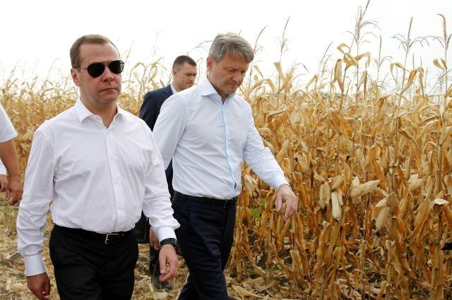 Медведев сказал оросте урожая зерновых в РФ в этом 2017