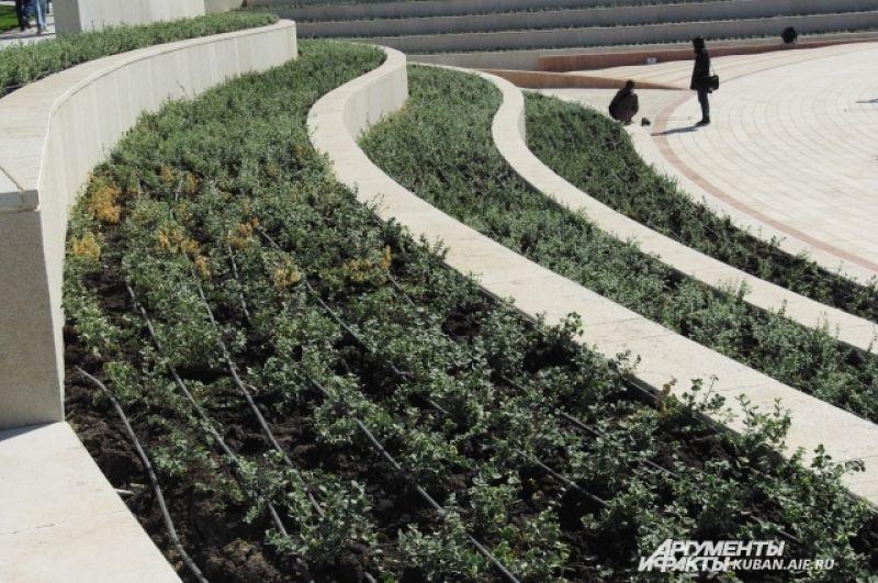 Организована система полива растений, что в южном городе необходимо.