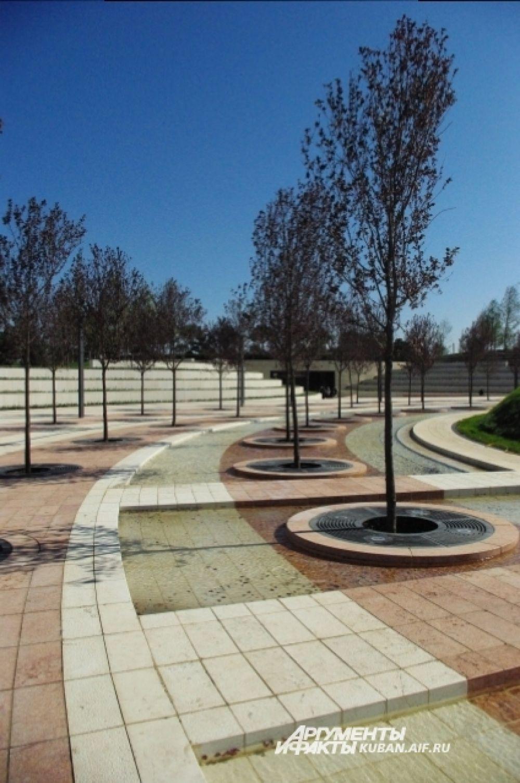 В парке высадили 2300 деревьев различных пород.