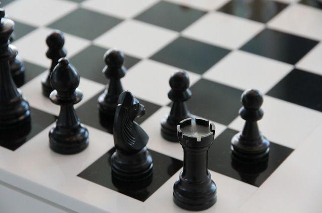 Областной турнир по шахматам пройдет с 1 по 8 октября.