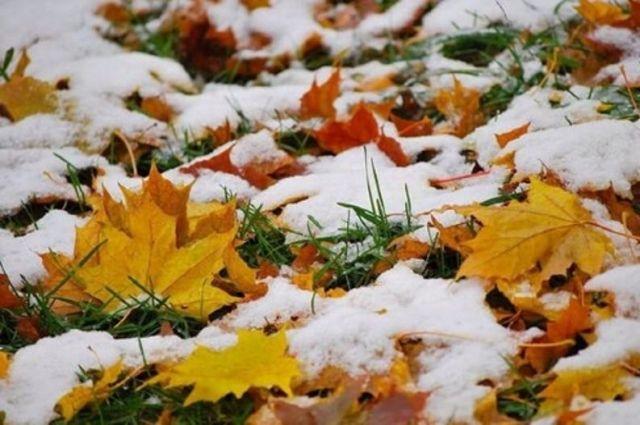 Первый снег может выпасть в октябре